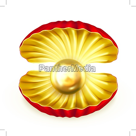 pearl gold vector