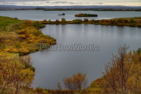 beautiful area of lake myvatn in