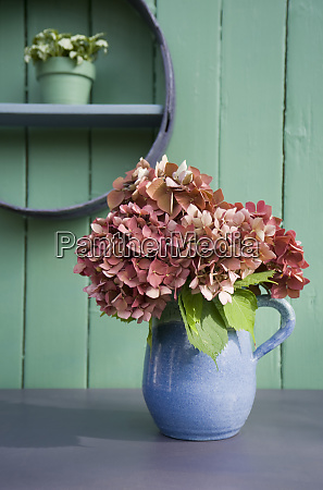 flower decoration flour sifter hortensia in