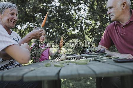 senior couple at garden table with