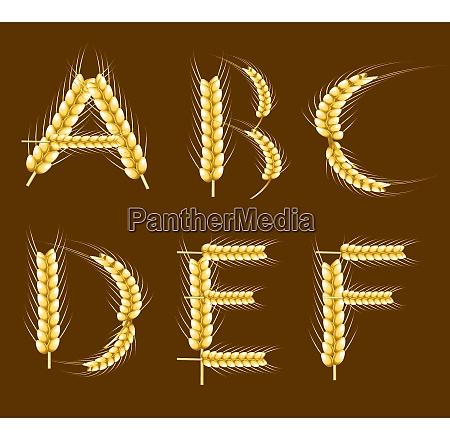 wheat alphabet