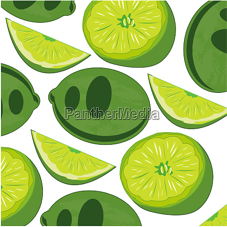fruit lime pattern on white background
