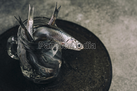 fresh anchovies in the jar with