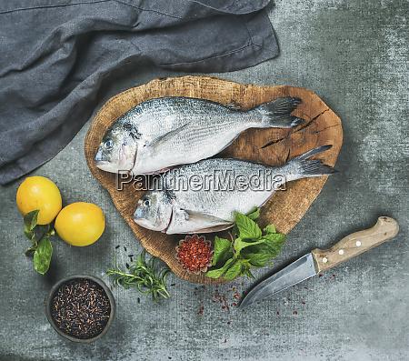 fresh uncooked sea bream or dorado