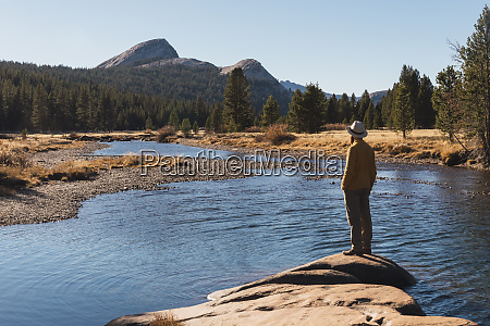 usa california yosemite national park tuolumne