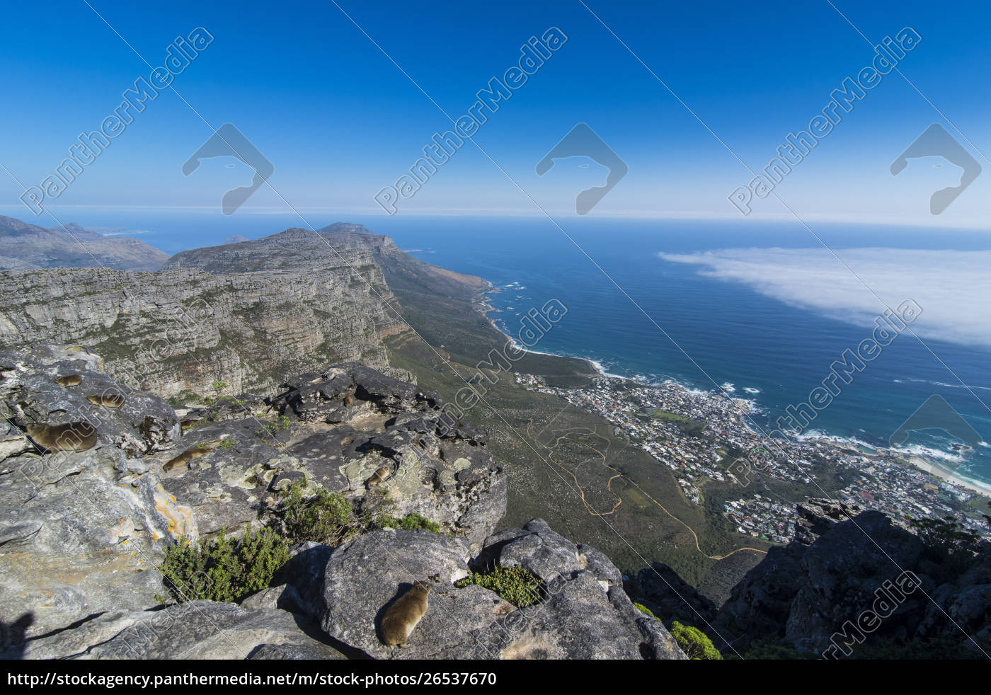 south, africa, , view, over, camps, bay, - 26537670
