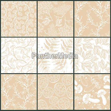 vector collection of floral seamless