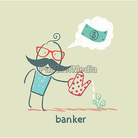 banker plant watering and thinks about