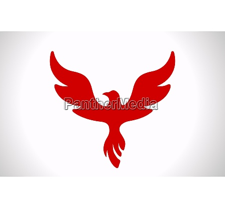 flying bird abstract logo template luxury