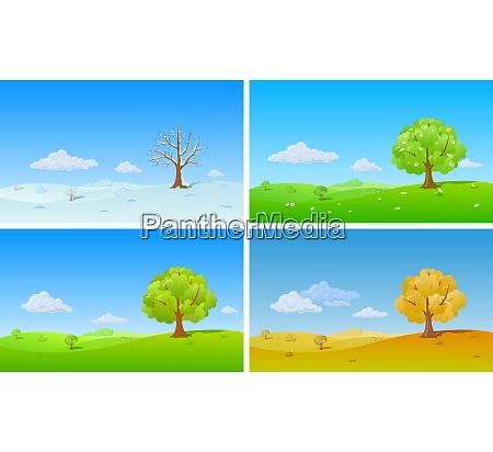 tree in four seasons winter spring