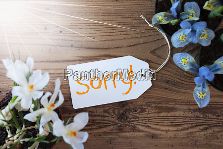 sunny flowers label text sorry wodden