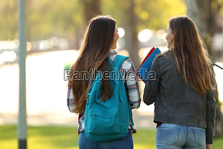 back view of two students walking