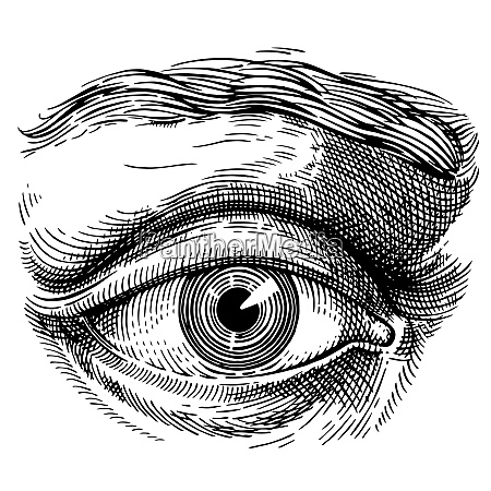 eye eye antique engraving style