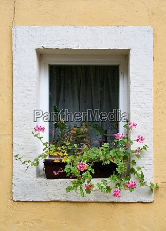 window of a house in the