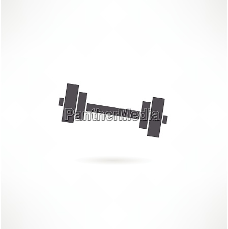 vector chromed weights