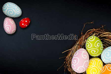 colorful happy easter eggs in bird