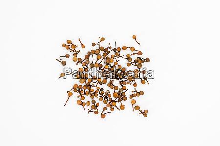 indian rose chestnut or nagakesar seeds