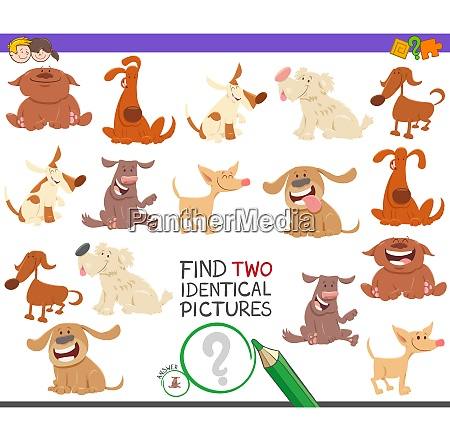 find two identical dogs task for