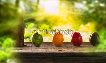colored easter eggs in spring