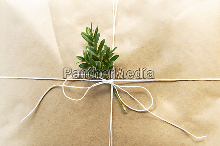 christmas present with leaves