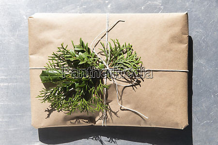 christmas present with pine fronds