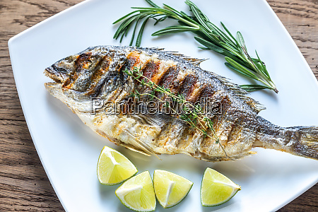 grilled dorade royale fish on the