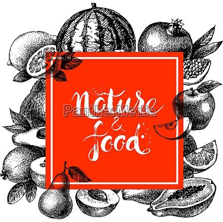 eco natural food menu background sketch