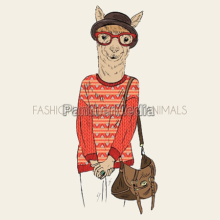 hand drawn illustration of hipster alpaca