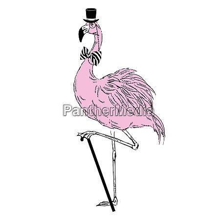 hand drawn illustration of fashion flamingo
