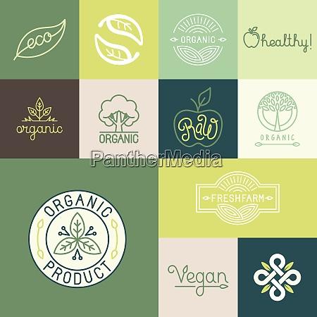 vector set of natural organic vegan