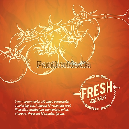 culinary cover background vector illustration