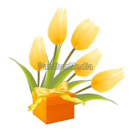 isolation gift and white tulips vector
