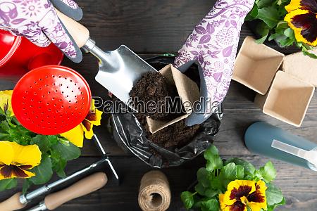 hands of gardener woman putting soil