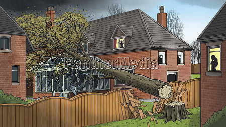 tree falling into neighbours house in