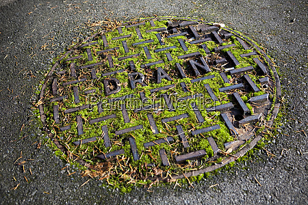 moss covered manhole cover