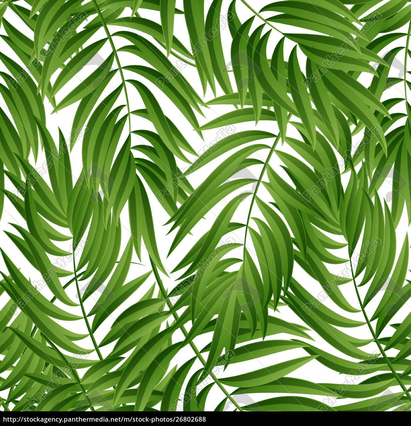 Tropical Palm Leaves Vector Seamless Tropical Palm Royalty Free Photo 26802688 Panthermedia Stock Agency Pikbest has 3796 tropical leaves design images templates for free. royalty free vector 26802688 tropical palm leaves vector