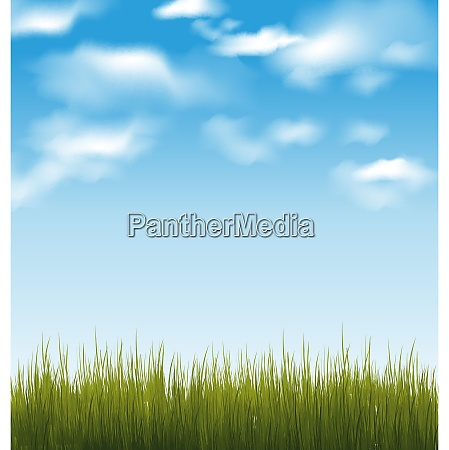 illustration spring background with green grass