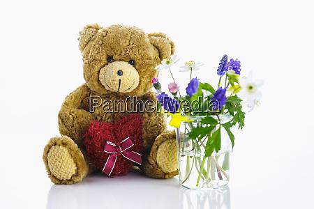 teddy bear against a white background