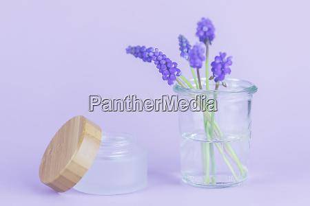 purple grape hyacinths with copy space