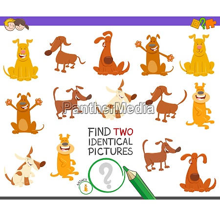find two identical dogs game for