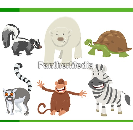 funny cartoon animal characters collection set