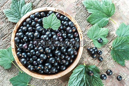 bowl of blackcurrant on the wooden