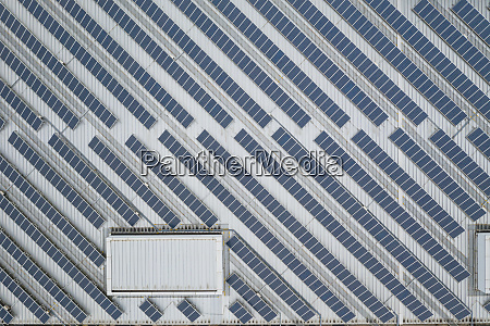 solar panel plant on roof top