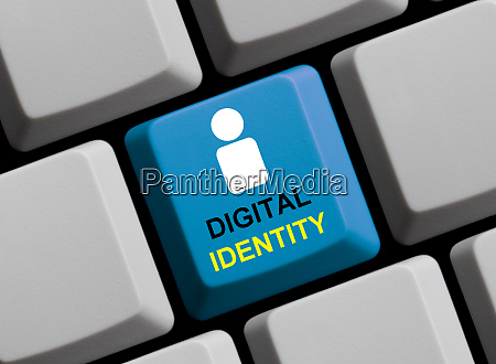digital identity concept online