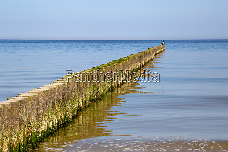 groynes in the baltic sea with