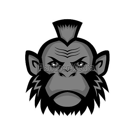 chimpanzee wearing mohawk mascot