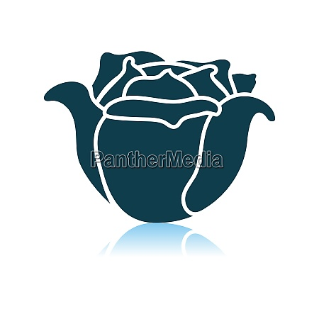 cabbage icon on gray background