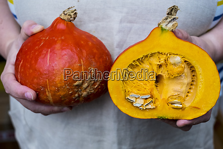 close up of person holding pumpkin