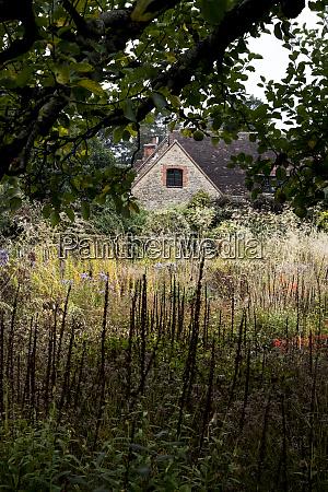 a prairie planting scheme in the