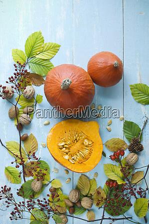autumnal arrangement with hokkaido pumpkins nuts